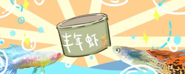 孔雀鱼喂什么饲料好,不吃食怎么办
