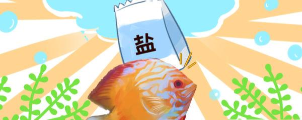 七彩神仙鱼蹭缸是怎么回事,怎么治疗