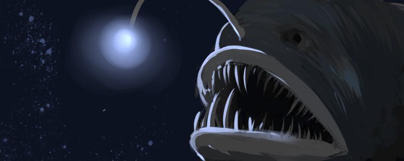 灯笼鱼是安康鱼吗,为什么会发光