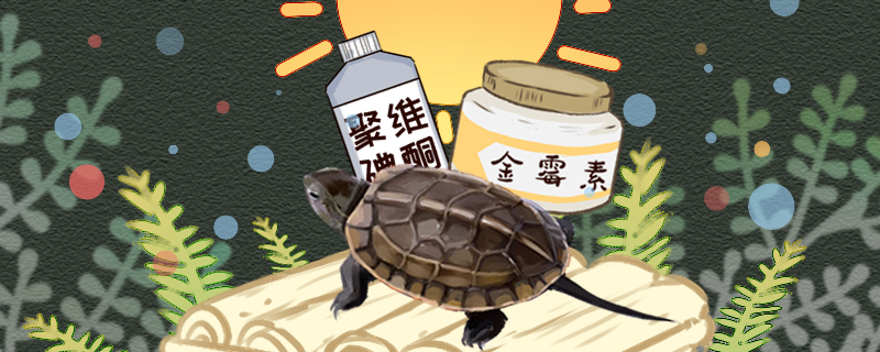 草龟腐皮原因是什么,怎么治疗好