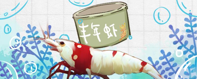 水晶虾吃藻吗,吃丰年虾吗