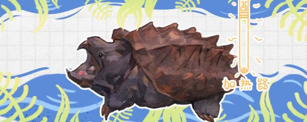 大鳄龟好养吗,吃什么长得快