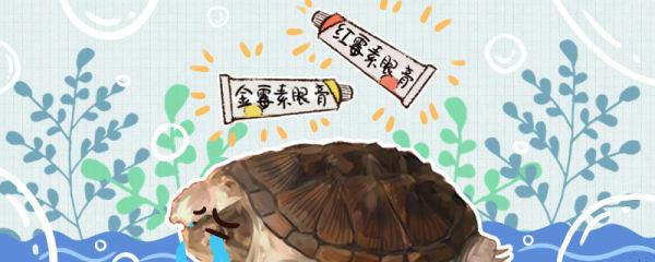 小鳄龟腐皮是什么原因,怎么治疗