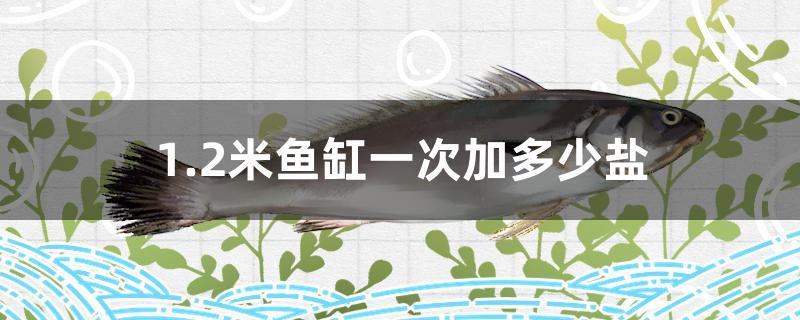 1.2米鱼缸养锦鲤_1.2米鱼缸一次加多少盐 - 鱼百科