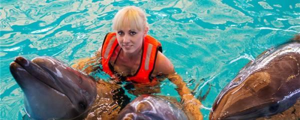 海豚真的会救人吗,为什么会救落水的人