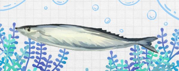 秋刀鱼是海鱼吗,在淡水中能活吗