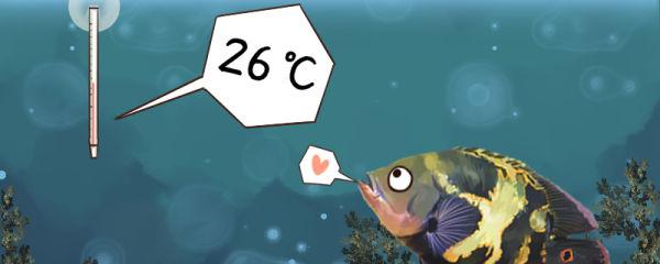 地图鱼适合水温是多少度,水温30度可以吗