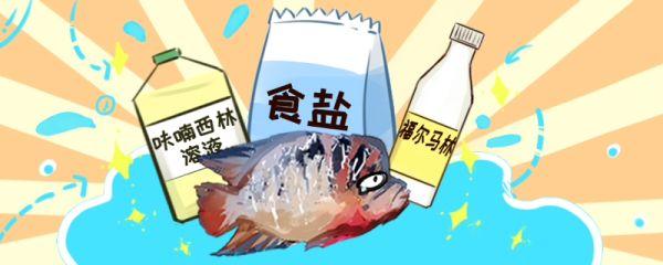 鱼生病了怎么治,治疗步骤有哪些