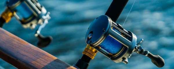 钓鲈鱼用什么调性的路亚竿,用什么鱼钩