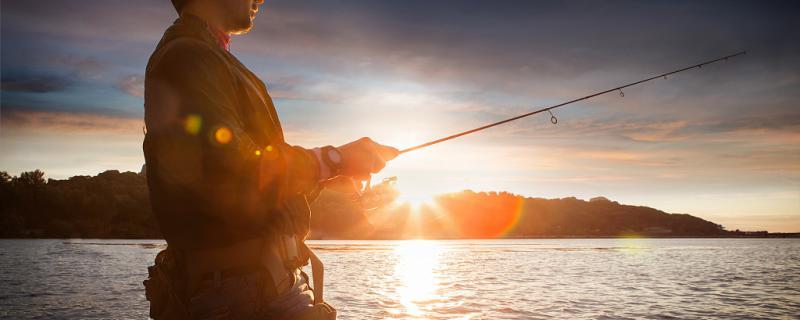冬天海钓适合钓什么鱼,钓鲈鱼好钓吗