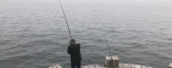 海鲈鱼冬天可以钓吗,怎么钓