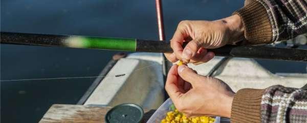 钓鱼饵料怎么做,怎么装在钩上